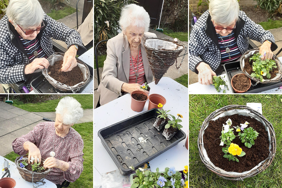 Potting pansies and planting seeds at St Winifreds Care Home